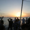 80-guests-catamaran-in-ibiza-38