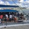 rent-boat-up-to-100-people-catamaran-ibiza-3
