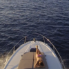 rent-motorboat-sea-ray-370-venture-ibiza-27